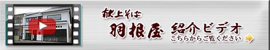 羽根屋 紹介ビデオ